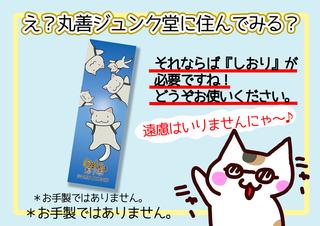 2018丸善ジュンク堂コンペ用決定もっともっと.png