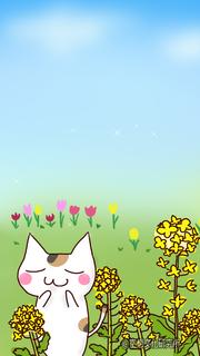 3月のヘッダーiPhone5サイズ.png